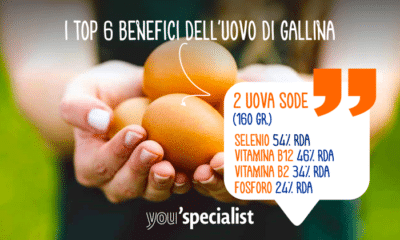 I Top 6 Benefici dell'Uovo di Gallina | Infografica