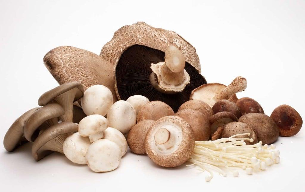 Idee per coltivare i funghi in casa