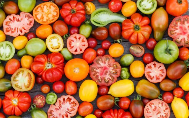 Idee per coltivare i pomodori: piante da coltivare in vaso