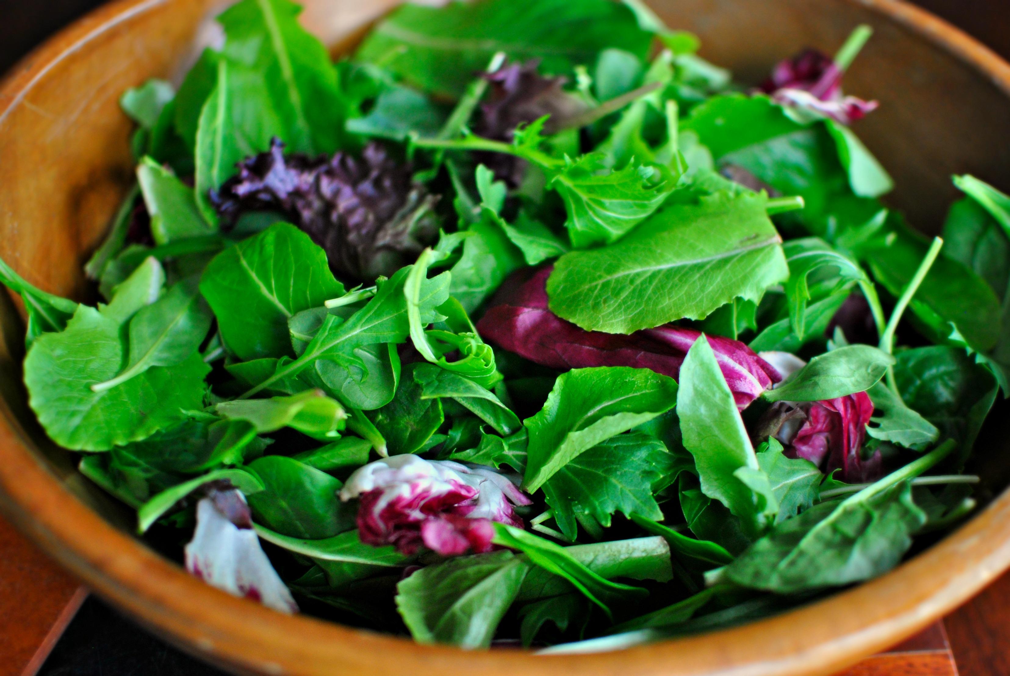 Come coltivare verdure da insalata: piante da coltivare in vaso
