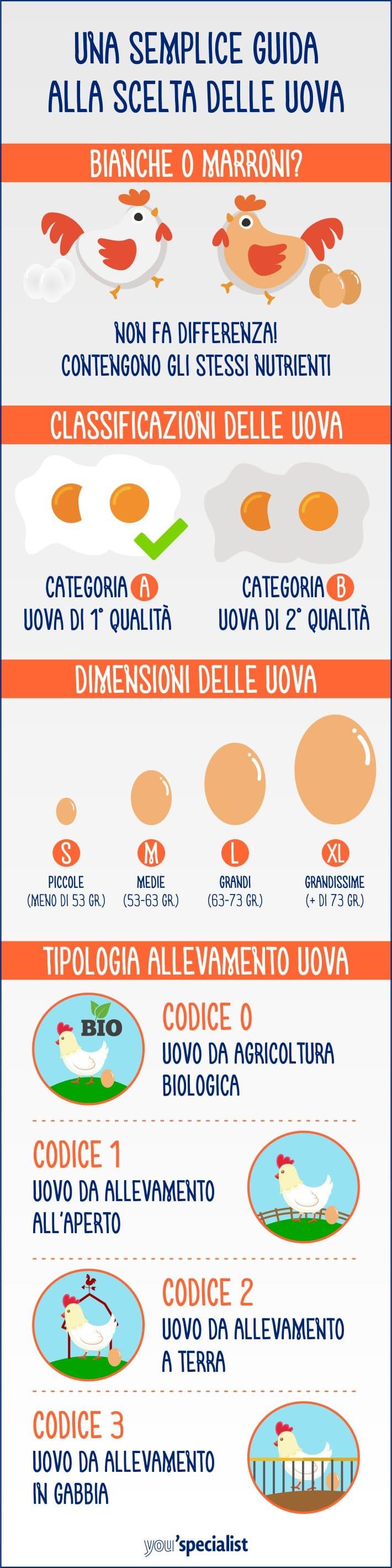 Guida per la scelta delle uova | infografica
