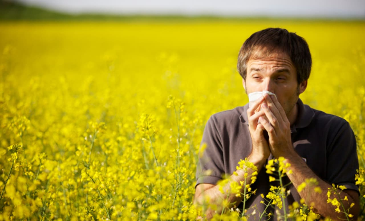 umore depresso e allergie