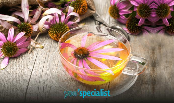 rimedi contro il mal di gola: il thè all'echinacea