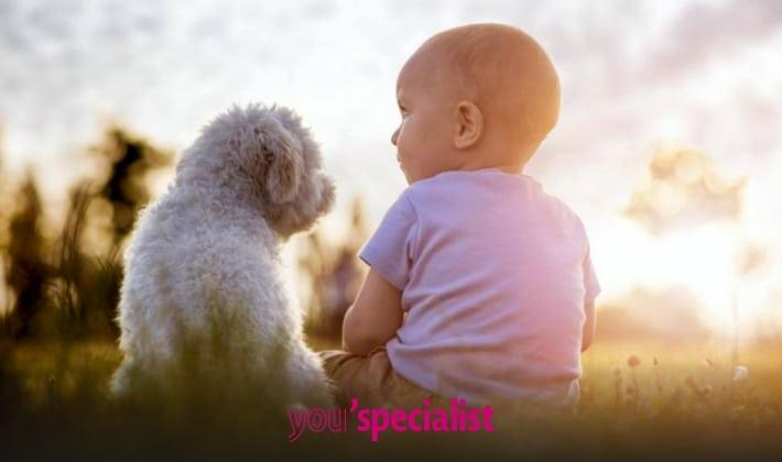 motivi per adottare un cane, il sistema immunitario