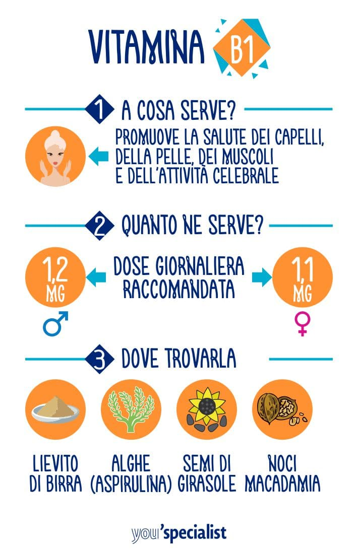 vitamina B1 tiamina: a cosa serve