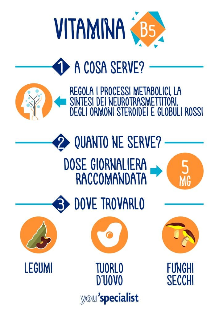 A cosa serve la vitamina B5